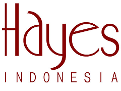 hayes indonesia, PT.